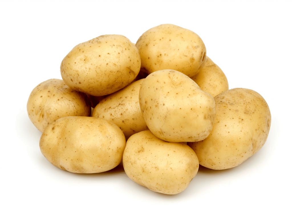 картофель Дельфин