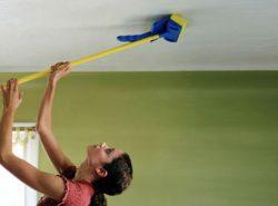 Мыть потолок рекомендуется не менее одного раза в месяц