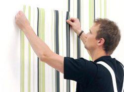 Оклеивание стен  обоями – это всегда удачное  использование бюджетного и экологически чистого покрытия для оформления интерьера помещения