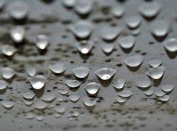 Мокрый потолок в погребе – это главная проблема, которая приводит к порче продуктов