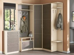 Угловой шкаф является многофункциональным предметом мебели, выполняющим несколько функций одновременно