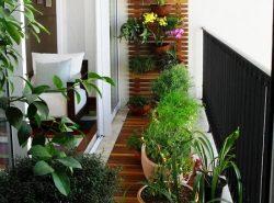 Зимний сад способен придать балкону уюта и комфорта