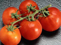 Выращивание помидор в теплице важно, так как они являются одними из популярнейших овощей на столе современного человека