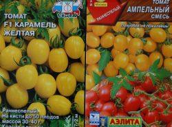 Существует широкое разнообразие сортов помидор, отличающихся по вкусу, размеру и методу выращивания