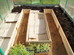 Благодаря теплым грядкам можно улучшить качество урожая в теплице