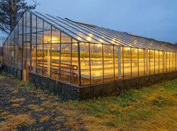 Круглогодичная теплица - отличный выбор садоводов