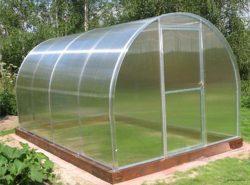 В поликарбонатной теплице можно выращивать различные овощи