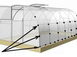 Как правильно крепить поликарбонат на теплицу должен знать каждый дачник
