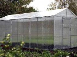 Теплица из поликарбоната своими руками – это доступная и эффективная постройка для выращивания