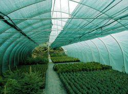 Затеняющая сетка для теплиц - средство, с помощью которого можно создать благоприятные условия для роста культур