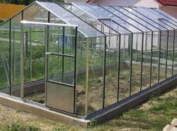 Теплицы из стекла используются в сельском хозяйстве уже давно