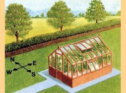 Установка теплиц по сторонам света важна и актуальна среди садоводов и огородников