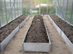 Расположение грядок в теплице вертикально или горизонтально полностью зависит от способа выращивания растений