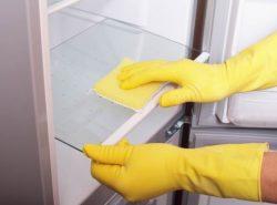 В магазине в отделе бытовой химии можно приобрести специальные средства для уничтожения плесневых грибков, в том числе и в холодильнике