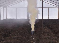 Дымовая шашка для теплицы считается одним из самых наилучших способов получить хороший урожай и избавиться от болезней тепличных овощей